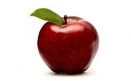 """Яблоня красномясая """"Джерси"""""""