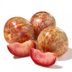 """Плумкот (слива-абрикос) """"Шедевр"""""""